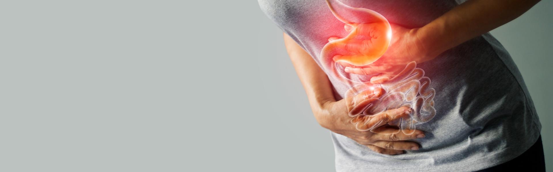 Disbiose intestinal: a importância da alimentação