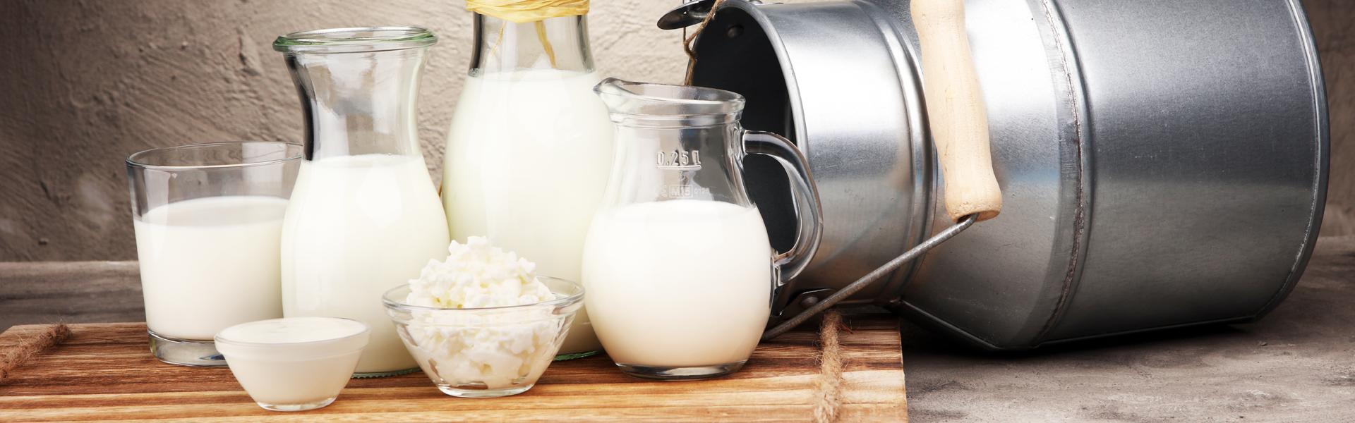 Qual a relação entre a osteoporose e o consumo de leite?